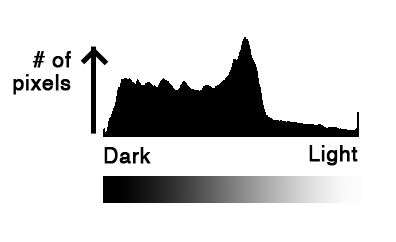 histogram-detail