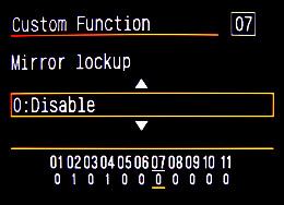 IMG_0519_mirrorlockup
