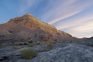 Mojave Desert / Photo by Steve Berardi