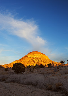 Sunrise in the Mojave / Photo by Steve Berardi
