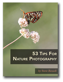 53 Tips For Nature Photography