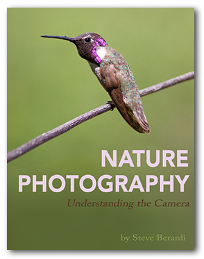 Nature Photography - Understanding the Camera (eBook)