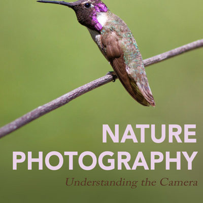 New eBook – Nature Photography: Understanding the Camera