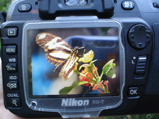 NikonScreen