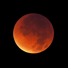 Lunar Eclipse (2011) / Photo by Steve Berardi