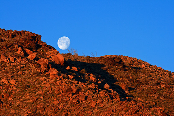 Sunrise and Moonset in the Mojave Desert / Photo by Steve Berardi